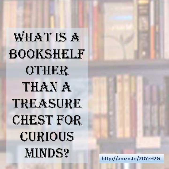 Bookshelves are a treasure chest for curious minds.