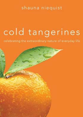 Shauna Niequist, author of Cold Tangerines: Celebrating the Extraordinary Nature of Everyday Life