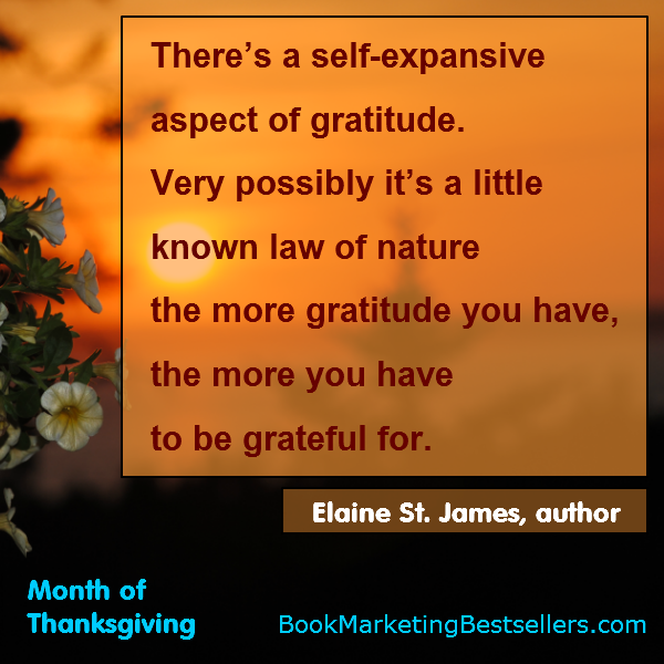Elaine St. James on Gratitude