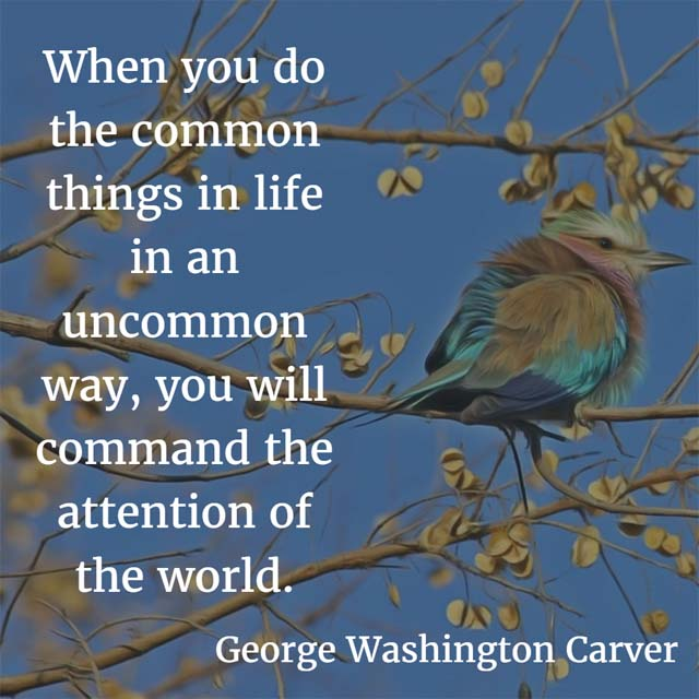 When you do the common things in life in an uncommon way, you will command the attention of the world. — George Washington Carver, inventor and botanist