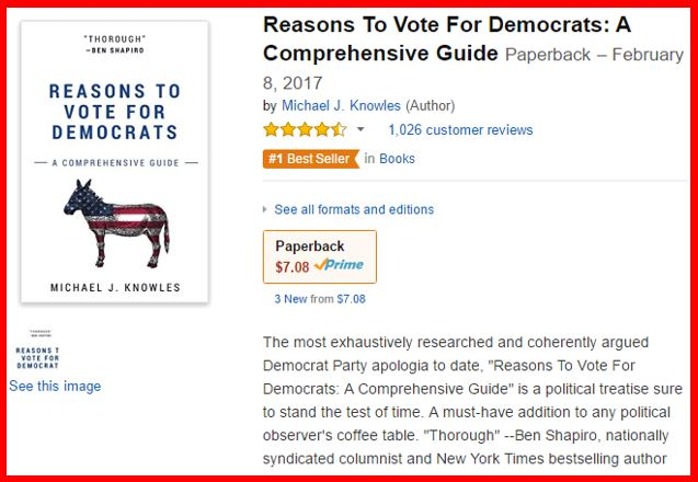 Reasons to Vote for Democrats blank book