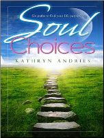 Soul Choices: Six Paths to Find Your Life Purpose