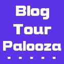 Blog Tour Palooza