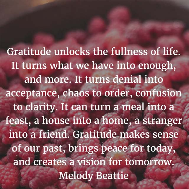 Melody Beatty on Gratitude: Gratitude unlocks the fullness of life. It turns what we have into enough, and more. It turns denial into acceptance, chaos to order, confusion to clarity. It can turn a meal into a feast, a house into a home, a stranger into a friend. Gratitude makes sense of our past, brings peace for today, and creates a vision for tomorrow.