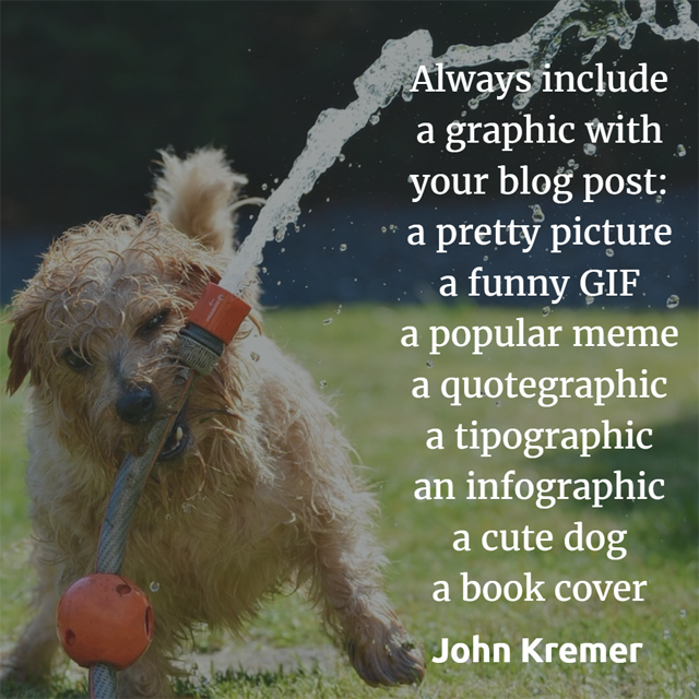 Add graphics to blog posts: Include graphics: a picture, a GIF, a meme, a quotegraphic, a tipographic, a cute dog, a book cover.
