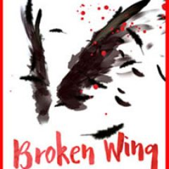 Broken Wing by John Graves
