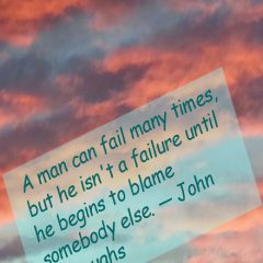 John Burroughs on Failures