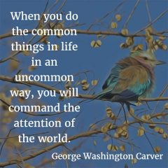 George Washington Carver on uncommon things