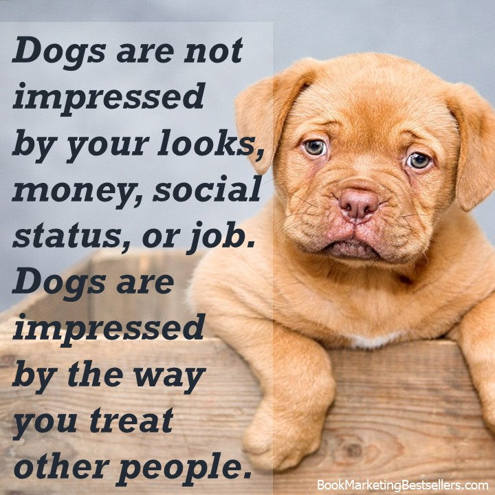 Be kind to other people. Be kind to dogs.