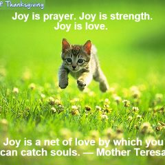 Joy Is Love - Mother Teresa