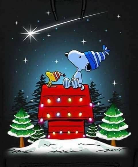 From Snoopy, Woodstock, and all the gang, have a Merry Christmas and a Blessed New Year! #MerryChristmas #SeasonsGreetings