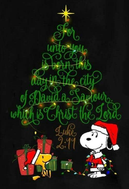 Snoopy and Woodstock on Christmas Eve